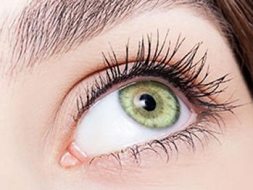 eye and eyelash close-up